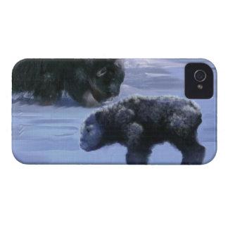 Arctic Musk Ox Mother & Calf Wildlife Art iPhone 4 Case