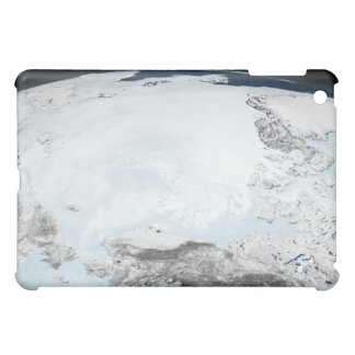 Arctic sea ice 2 iPad mini cover