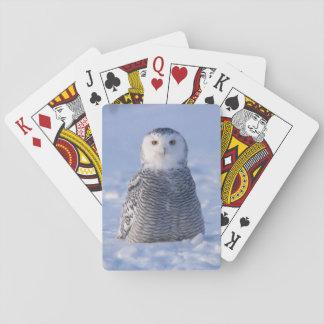 Arctic Snowy Owl Alaska Winter Scene Playing Card