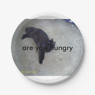 are you hungry plates