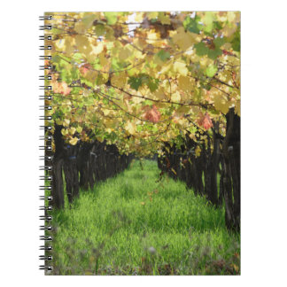 Argentina, Mendoza, Row Of Grape In Vineyard Notebook