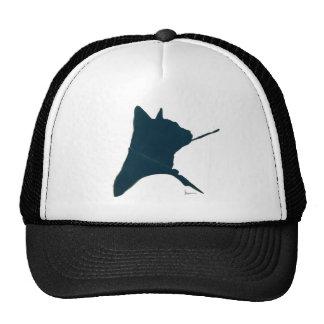 aristoCAT Hats