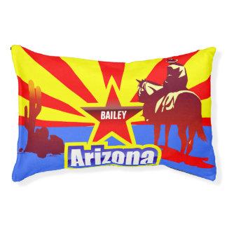 Arizona State Flag Vintage Drawing
