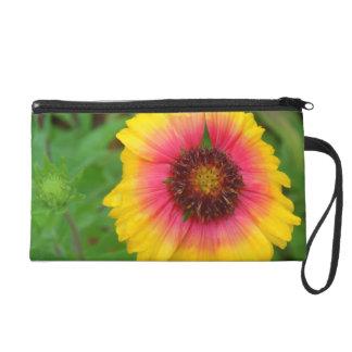 Arizona Sun Blanket Flower Wristlet