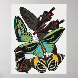 Art Deco Butterflies Poster