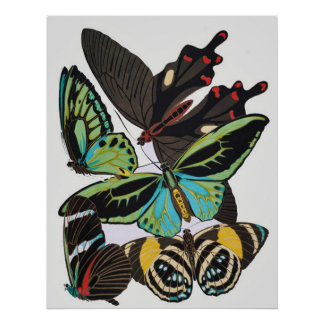 Art Deco Butterflies Posters