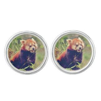 Art Studio 15216 red Panda Cufflinks
