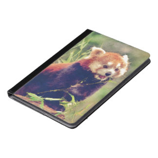 Art Studio 15216 red Panda