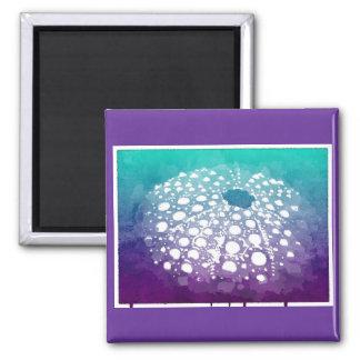 Artistic Sea Urchin Magnet