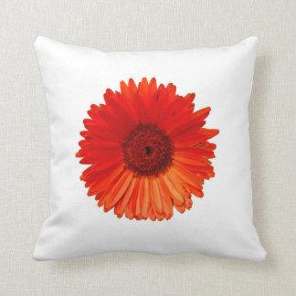 Artsy Bright Orange Gerbera Daisy on White Pillows