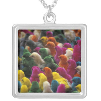Asia, India, Karnataka, Mysore. Colored chicks Silver Plated Necklace