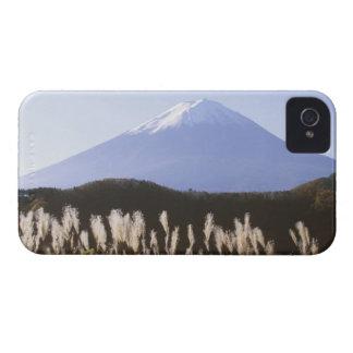 Asia, Japan, Yamanashi, Kawaguchi Lake Mt. Fuji Blackberry Bold Covers