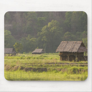 Asia, Thailand, Mae Hong Son, Rice huts in the Mouse Pad