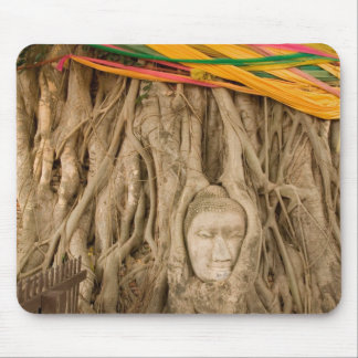 Asia, Thailand, Siam, Buddha in tree ruts at Mouse Pad