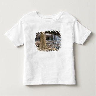Asia, Waterfall on the border between Thailand T Shirt