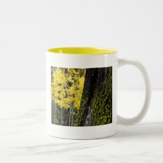 Aspen and Moss Two-Tone Coffee Mug