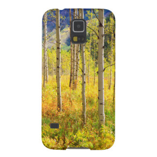 Aspen Trees in Autumn in the Rockies Galaxy S5 Covers