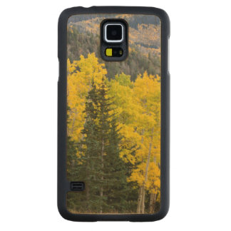 Aspen Trees (Populus Tremuloides) And Conifers 2 Carved Maple Galaxy S5 Case