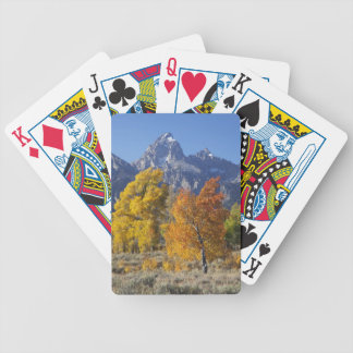 Aspen trees with the Teton mountain range 6 Bicycle Playing Cards