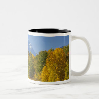 Aspen trees with the Teton mountain range 7 Two-Tone Coffee Mug