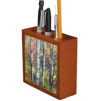 Aspens in Autumn Pencil Holder