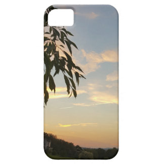 At days end barely there iPhone 5 case