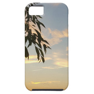 At days end iPhone 5 cases