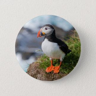 Atlantic Puffin Fratercula Arctica 6 Cm Round Badge