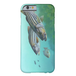 Atlantic Striped Bass Fish Morone Saxatilis Barely There iPhone 6 Case