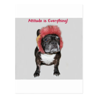 attitude is everything cute dog postcards