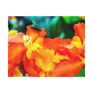 """""""Attraction"""" - Beautiful Orange Orchids w/Fly Canvas Print"""