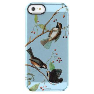 Audubon: Chickadee Clear iPhone SE/5/5s Case