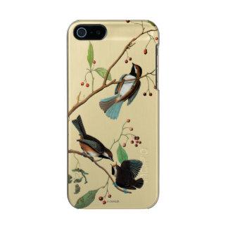 Audubon: Chickadee Incipio Feather® Shine iPhone 5 Case