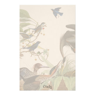 Audubon Heron Bluebird Bird Wildlife Stationery