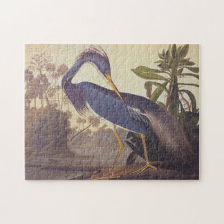 Audubon Lousiana Heron on Coastal Marsh Land Jigsaw Puzzle