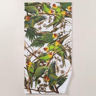 Audubon Parrot Birds Wildlife Animals Beach Towel