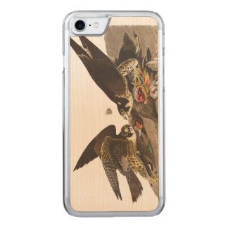 Audubon Plate 16 Great-footed Hawk Carved iPhone 8/7 Case