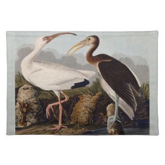 Audubon White Ibis Place Mat