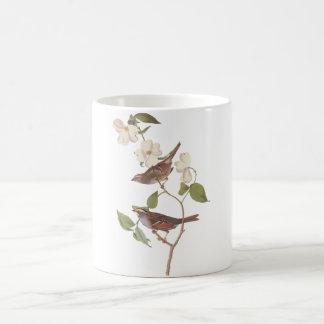 Audubon White Throated Sparrow Mug