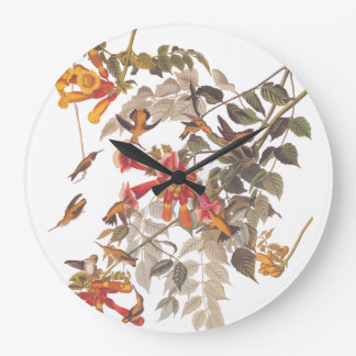 Audubon's Ruby Throated Hummingbirds with Flowers Large Clock