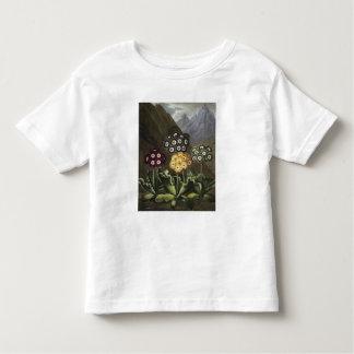 Auriculas from Dr John Robert Thornton's Toddler T-Shirt