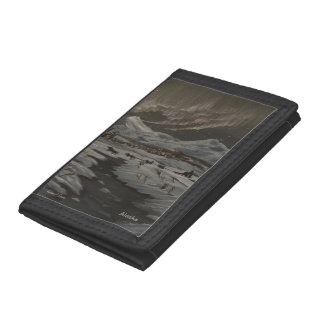 Aurora Wallet