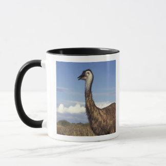 Australia, Western Australia. Emu (Dromaius Mug