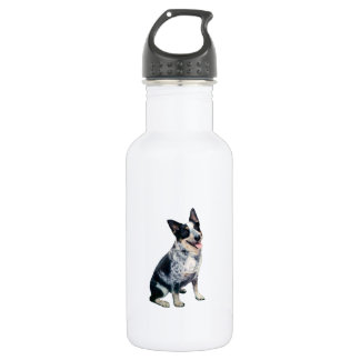 Australian Cattle Dog (A) 532 Ml Water Bottle