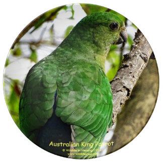 Australian Female King Parrot Plate