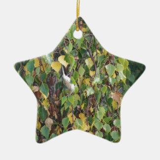 australian flora and fauna at its finest ceramic star decoration
