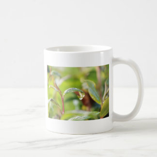 australian flora and fauna at its finest coffee mug