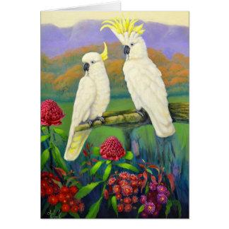 Australiana 1 cockatoos card