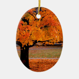 Autumn An Beauty Christmas Ornament