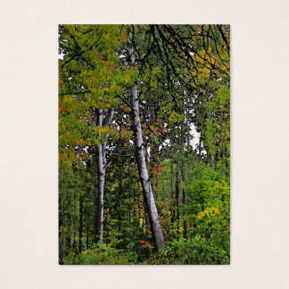 Autumn Aspens ATC Business Card